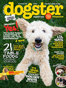 Latest issue of Dogster Magazine