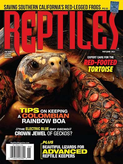 Latest issue of Reptiles
