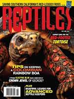 Reptiles 1 of 5