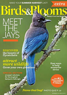 Latest issue of Birds and Blooms Extra