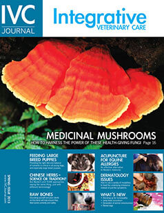 Latest issue of Integrative Veterinary Care Journal