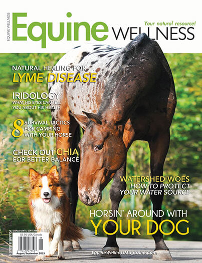 Latest issue of Equine Wellness