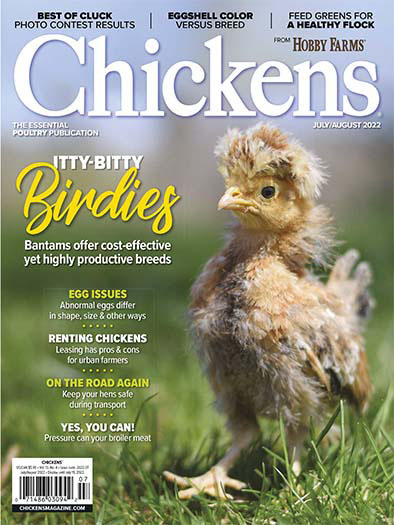 Latest issue of Chickens