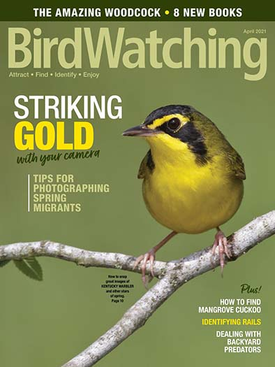 Latest issue of Birdwatching