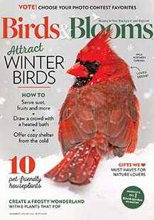 Latest issue of Birds and Blooms