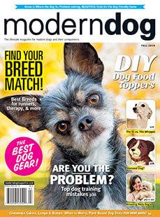 Latest issue of Modern Dog Magazine