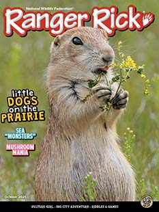 Latest issue of Ranger Rick Magazine