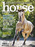 Horse Illustrated 1 of 5
