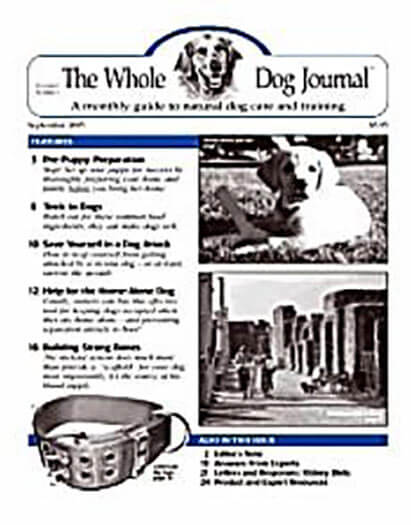 Latest issue of Whole Dog Journal Magazine