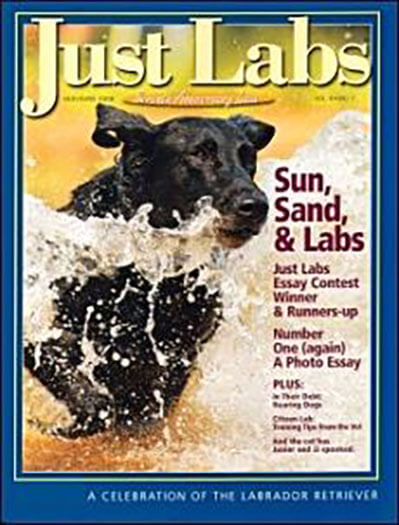 Subscribe to Just Labs