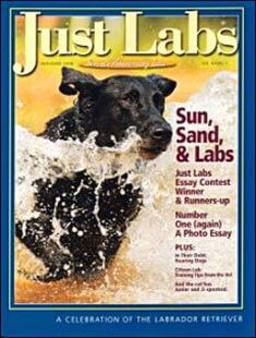 Latest issue of Just Labs