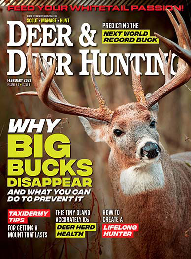 Subscribe to Deer & Deer Hunting