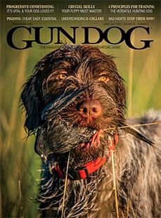 Latest issue of Gun Dog Magazine