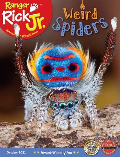 Latest issue of Ranger Rick Jr.