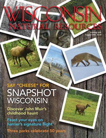 Latest issue of Wisconsin Natural Resources Magazine