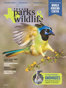 Latest issue of Texas Parks & Wildlife Magazine