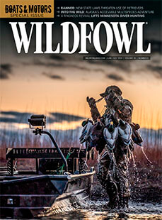 Latest issue of Wildfowl Magazine