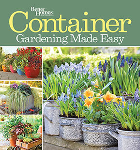 Cover of Container Gardening Made Easy digital PDF