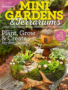 Cover of Mini Gardens & Terrariums digital PDF