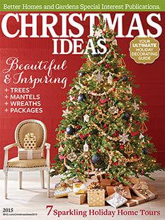 Cover of Christmas Ideas 2015 digital PDF
