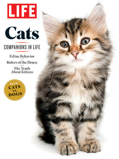 Cover of LIFE: Cats