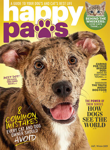 Cover of Happy Paws Fall/Winter 2019
