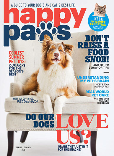 Cover of Happy Paws Spring/Summer 2020